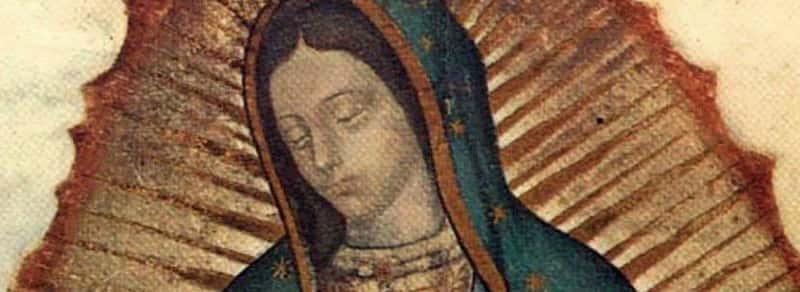 Oración A La Virgen De Guadalupe Protección Amparo Y Milagro