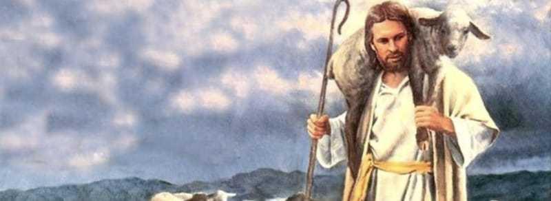 Oración del corderito manso