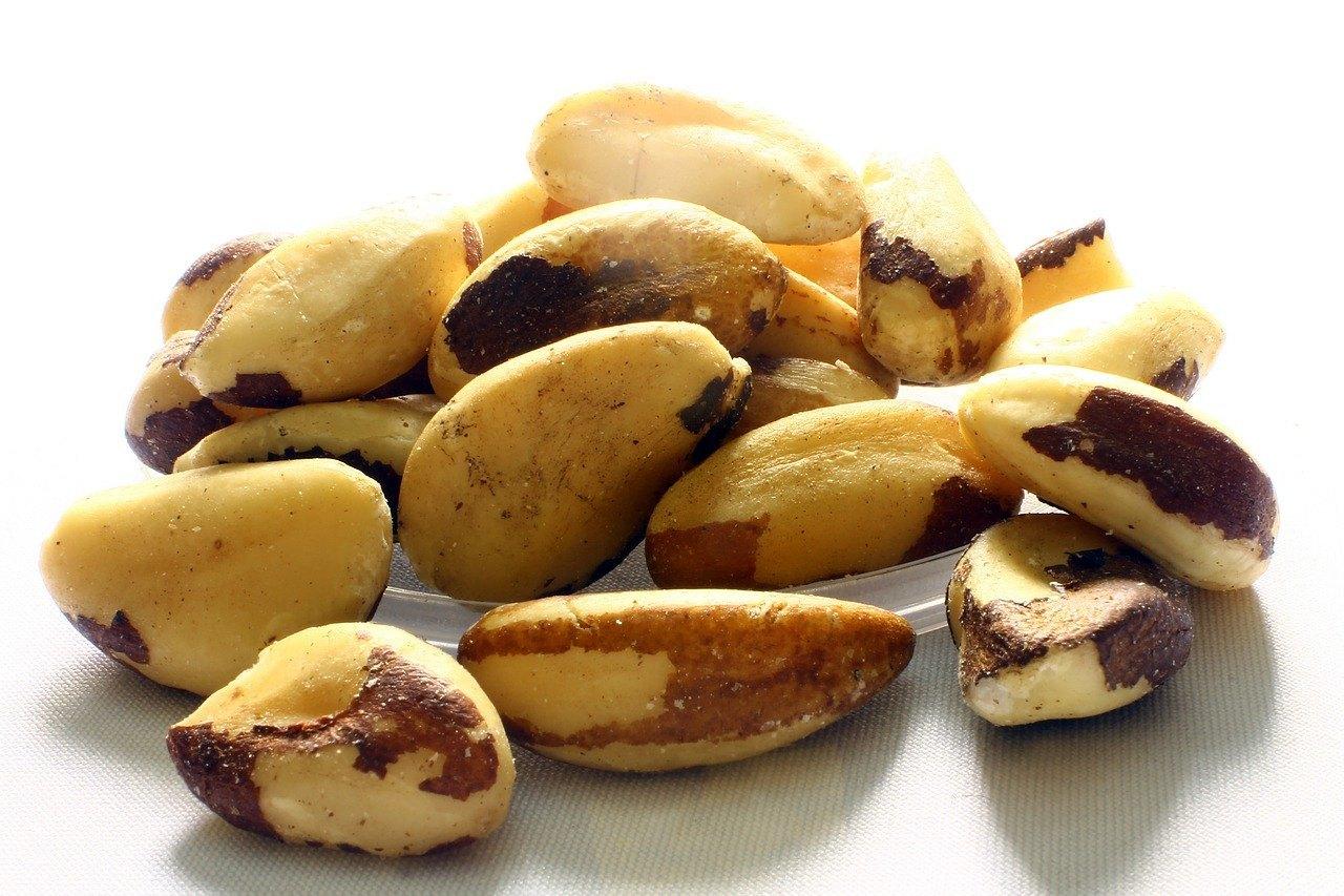 la semilla de brasil para bajar de peso