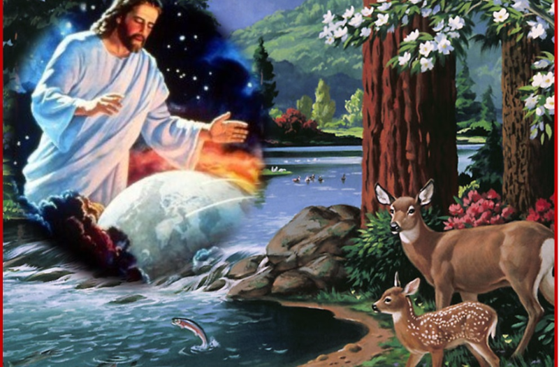Creación-de-Dios