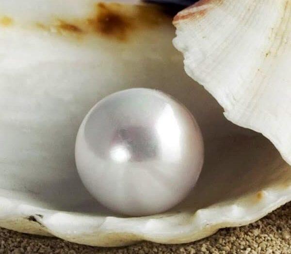 la-perla-de-gran-precio